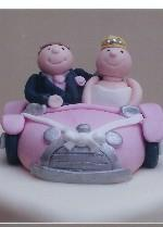Pink Car Topper